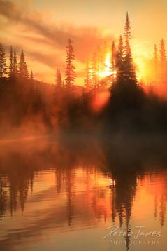 Tangerine Morning Mist