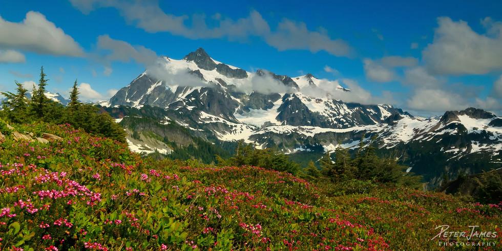 Mt. Shuksan Above Heather Meadows