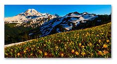 Huge Panoramic Metal Prints of Nature Photography