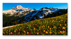 Huge Panoramic Metal Prints of Nature Photography