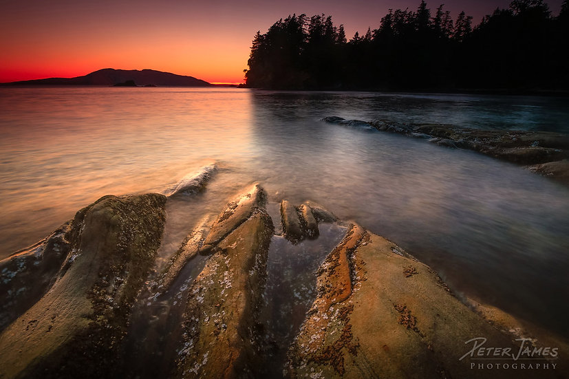 Chuckanut Coast Sandstone Sunset