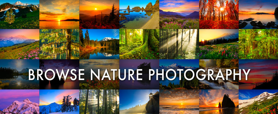 Pacific Northwest Nature Pictures