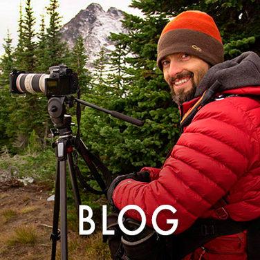 Nature Photo Blog