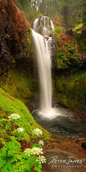 $110 - Falls Creek Cascades