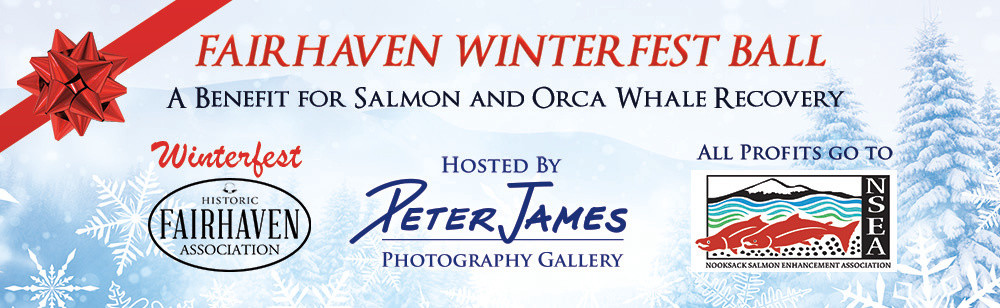 Join the Peter James Photography Gallery to raise funds for the Salmon that ur resident Orca's depend on.