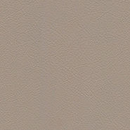 tz_dcs_0018_leather_cappuccino.jpg