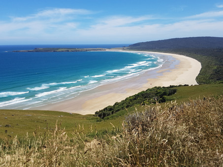 Dreaming of New Zealand - Te Aotearoa