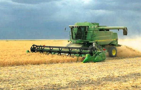 combine-harvesting-pulse-crop-sask-agric