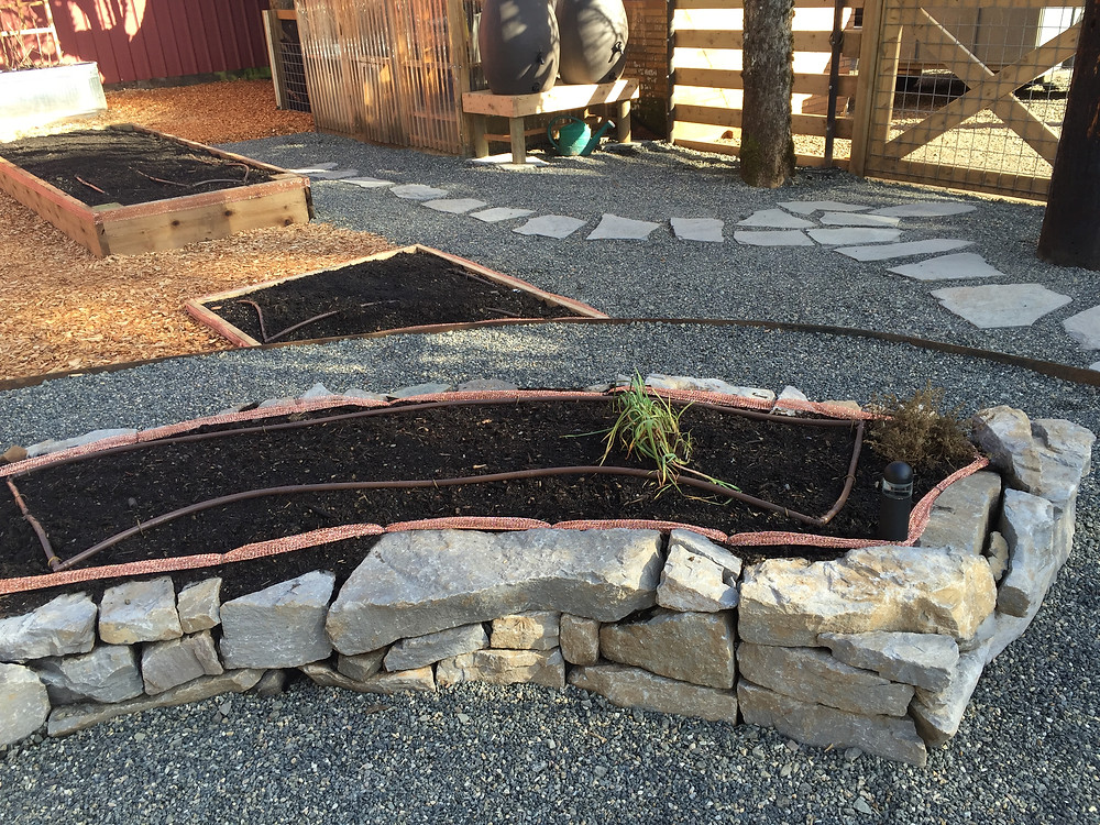 Rock raised Vegetable Bed