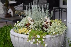 concrete planter bowl