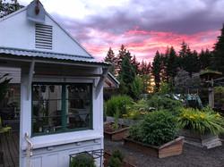 Greenhouse at Laurel Hedge gardens