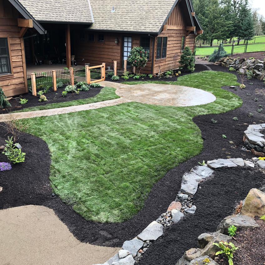 New sod around a new patio