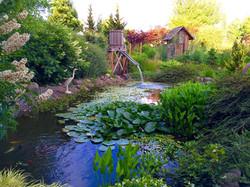 The Pond at Laurel Hedge