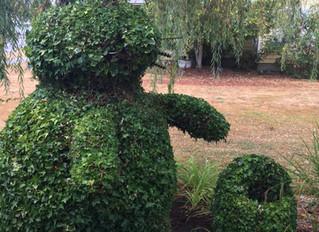 Mr Bunny needed a trim!