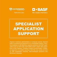 sepcialist-application-support.jpg