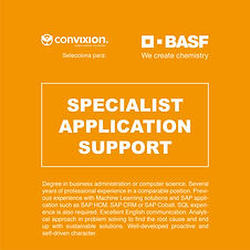 sepcialist-application-support.jpg