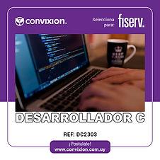 desarrollador-c.jpg