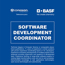 13-software-development-coordinator.jpg