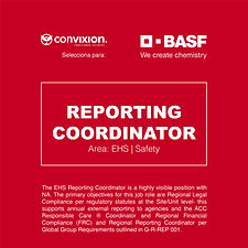 reporting-coordinator-basf.jpg