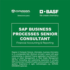 10-sap-senior-consultant.jpg