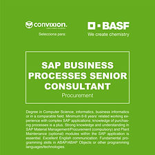 11-sap-senior-consultant2.jpg