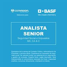 analista-senior-seguridad-social.jpg
