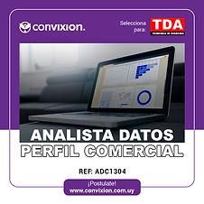 analista-datos-prefil-comercial.jpg