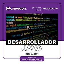 desarrollador-java.jpg