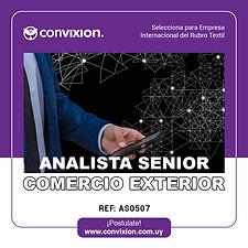analista-senior-comercio-exterior.jpg