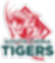South_China_Tigers_logo.png