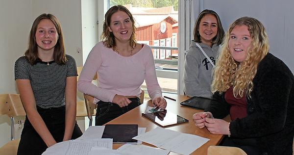 Svanberga Skola grupparbete, Saga, Fredrika, Ellen och Julia