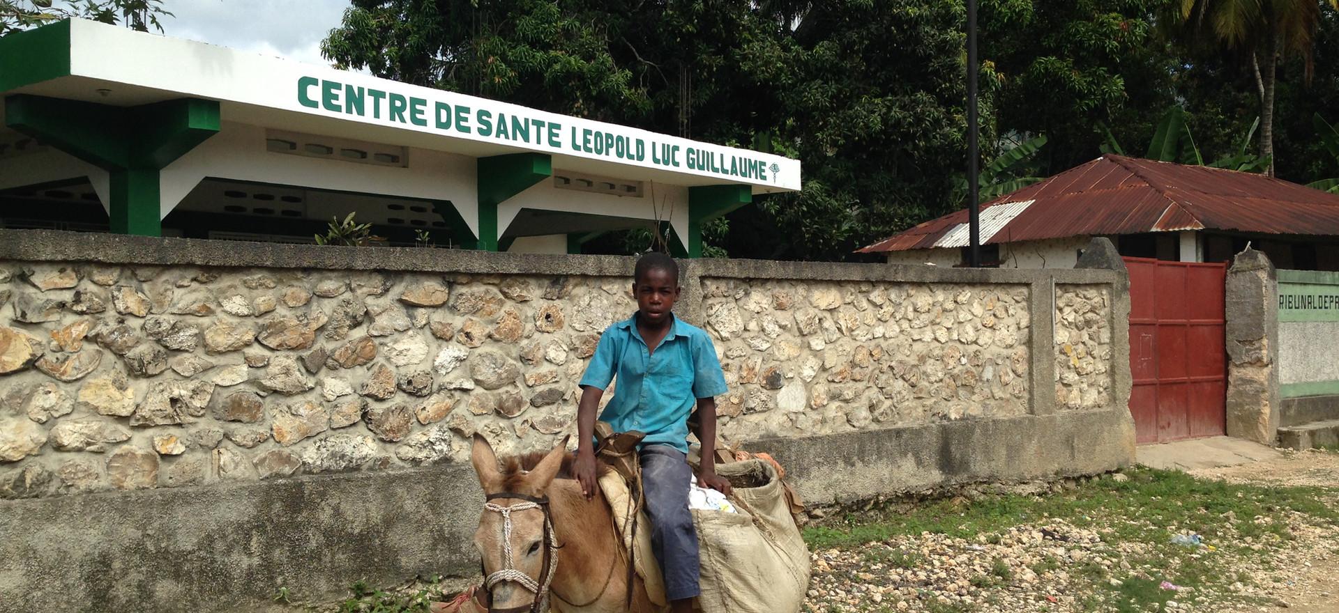 clinic donkey.JPG