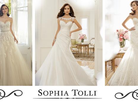 Feature Designer: Sophia Tolli