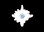 Blue Center Website.png