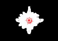 Red Center Website.png