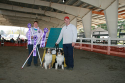 Thom Jazzi and Baylee with judge Kim Stumph May 7, 2011 got his C-ATCH