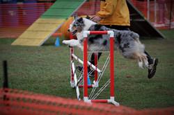 Beau Jump