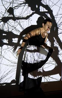 Marimedia, installation on the theme of Marimekko at Habitare, Helsinki,  2007