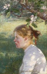 Danielson-Gambogi, Elin (1861–1919)