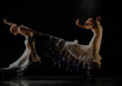 Dancer Etoile - Choreographer Minna Tervamäki's website design Piaf Digital
