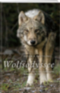 Wolfsodyssee.jpg