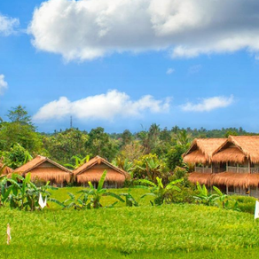 Bali Silence Retreat: inspired by spiritual wisdom