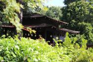 JAPANESE HOUSE _Boshia.JPG