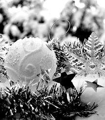 winter-3008975_1920_edited.jpg
