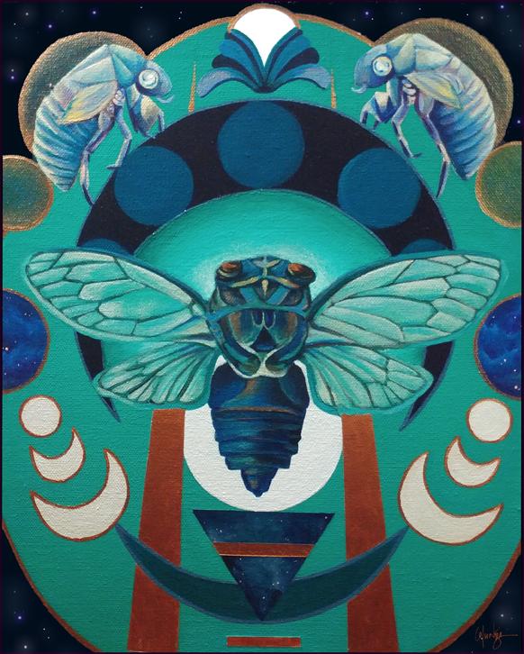 Cicada Night