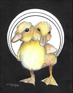 2 Headed Duck