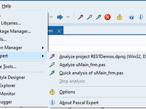 Product Review: Pascal Expert