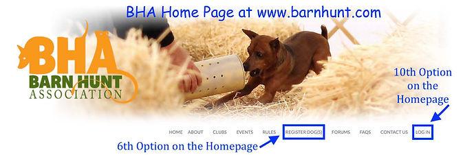 First Time - 1.BHA homepage pic.jpg