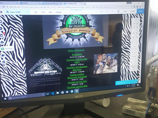 The Launching of the website