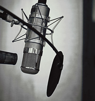 Professional%2520Microphone%2520with%252